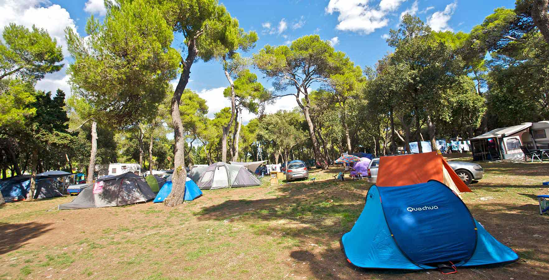 camping in the woods. Campsite Stoja - Camping In The Woods A