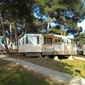 Campsite Indije - mobile homes