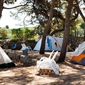 Campeggio Waterman Beach Village - camping all'ombra