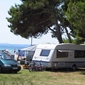 Campsite Dalmacija - accommodation in Croatia