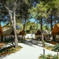 Camping Falkensteiner Premium Camping Zadar - accommodation