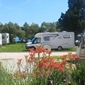 Camping Viter - accommodatie