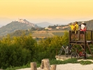 Motovun - photo