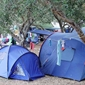 Campsite Lupis -accommodation