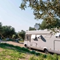 Campeggio Olivia Green Camping - camping all´ombra