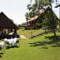 Campsite Heart of Nature - accommodation in Croatia