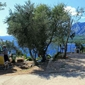 Campsite Ponta - pitches by the sea