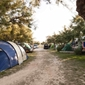 Campsite Puntica - accommodation in Croatia